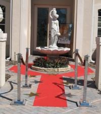 Red Carpet Movie Premiere